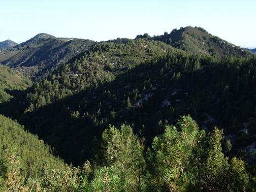 Lopez Mountain